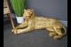 Large Lying Down Golden Tiger Floor Ornament, Large Resin Gold Tiger