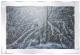 Snowy tree in winter with glitter detail in mirrored frame, glitter art 100x60