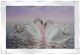 Loving Swan picture with glitter in mirrored frame, Swan birds in sunset