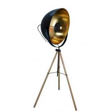 Contemporary Black and Gold Floor Lamp